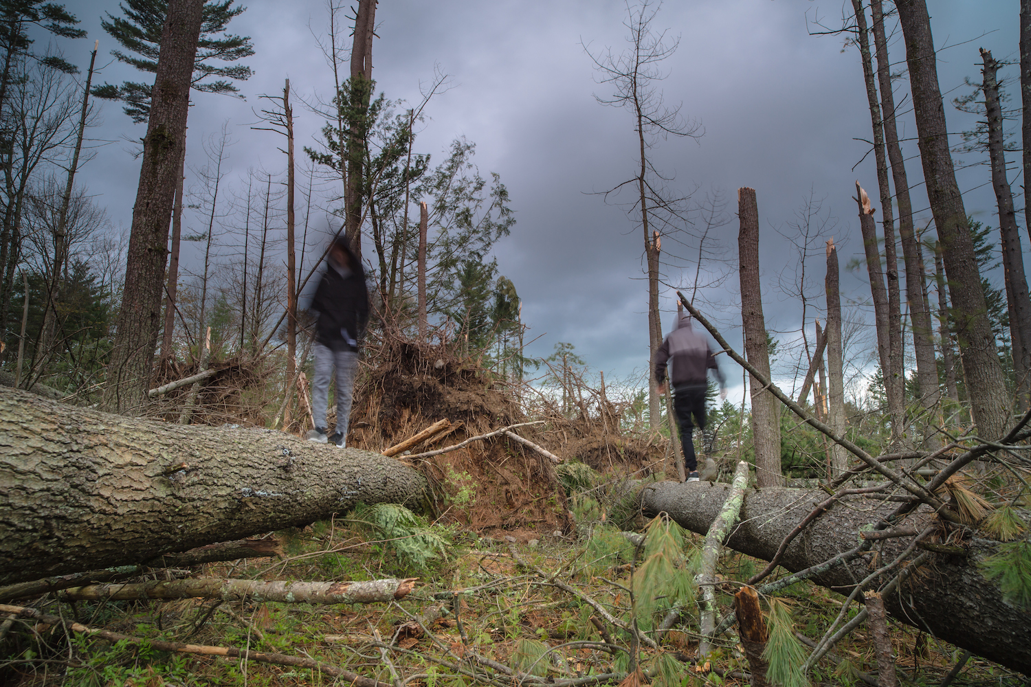 Blurred people walking after hurricane example image 1