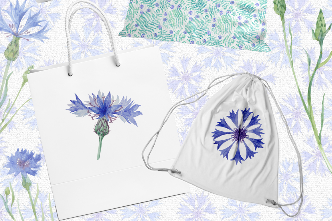 Cornflowers. Watercolor set. example image 6