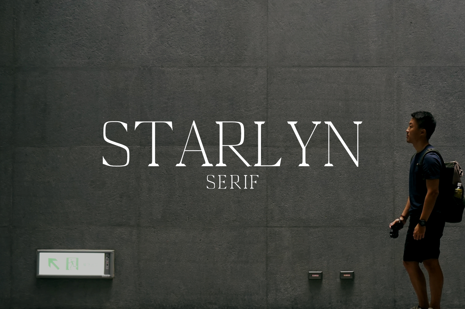 Starlyn Serif Font Family example image 1