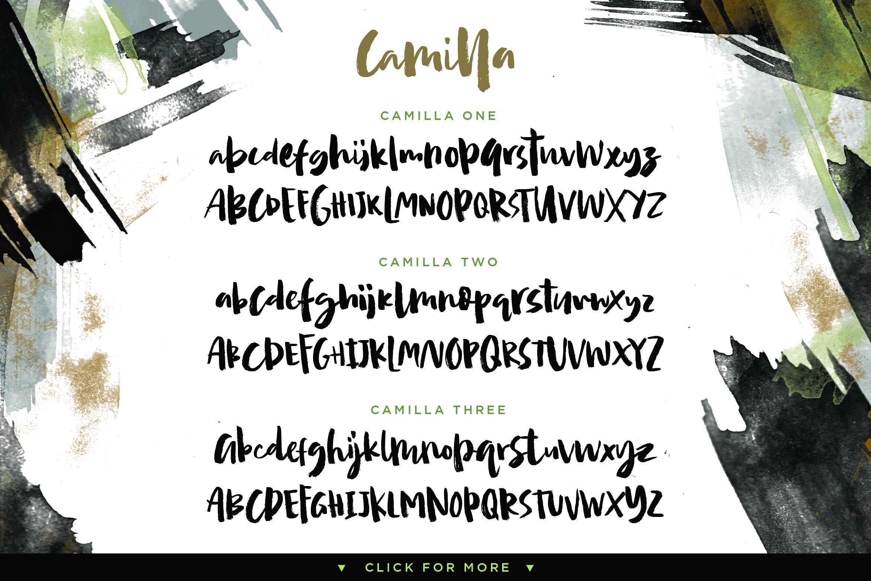 Camilla - Textured Brush Font example image 3