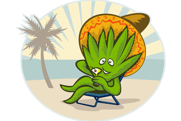 Agave plant cartoon sombrero hat martini beach example image 1