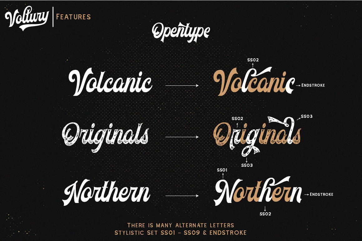 Voltury 4 fonts with extras example image 4