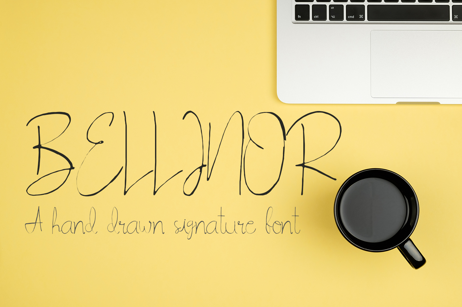 Bellinor A Hand Drawn Signature Font example image 1