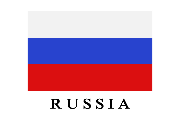 Russia flag example image 1