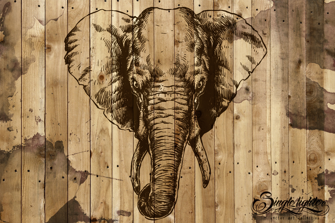 Animals Vector - discount till end december example image 3