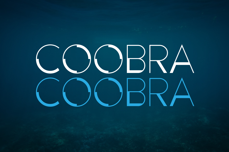 Coobra example image 2