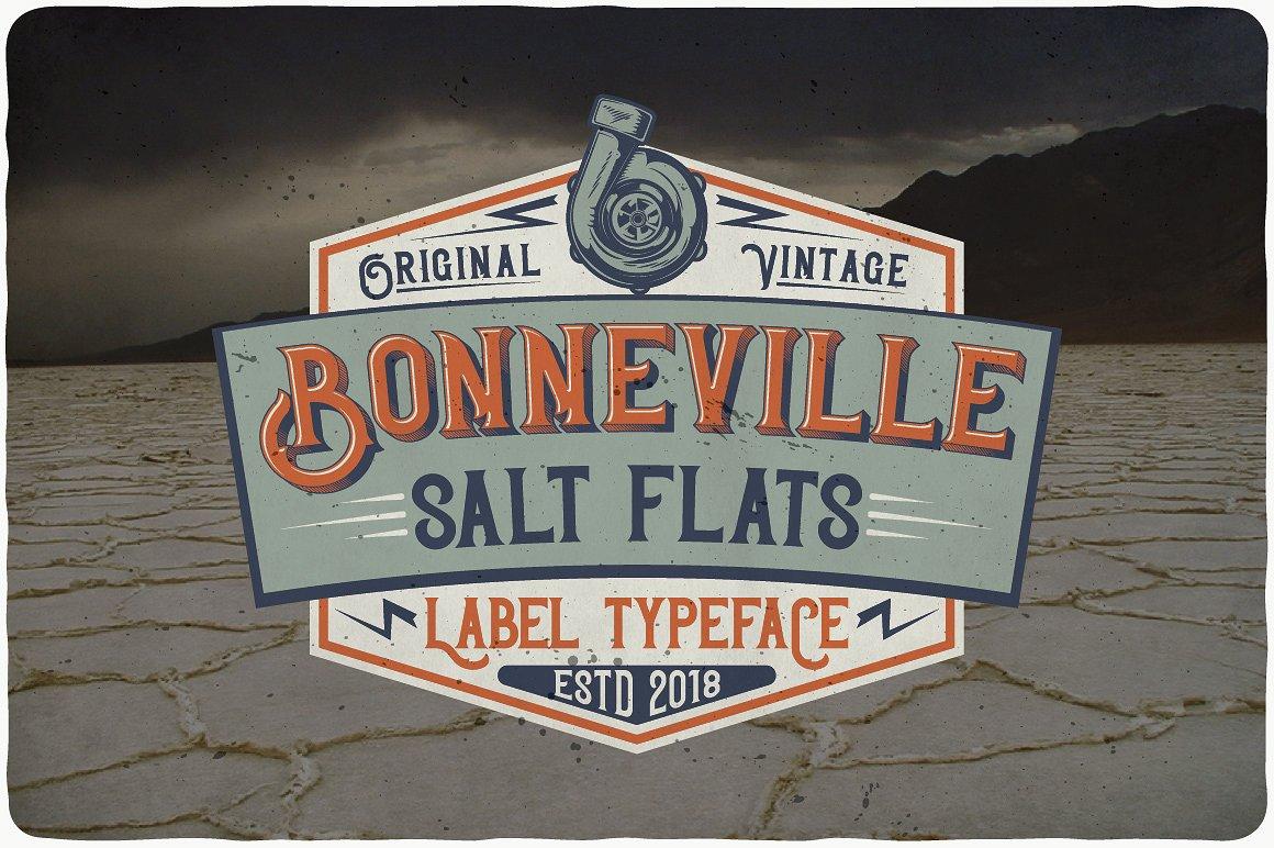 Bonneville example image 3