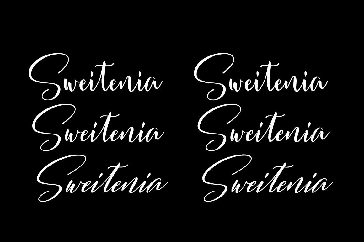 Sweitenia example image 3