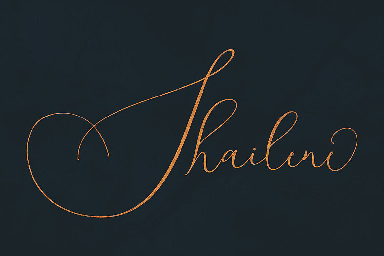 Shailene Script Font example image 6