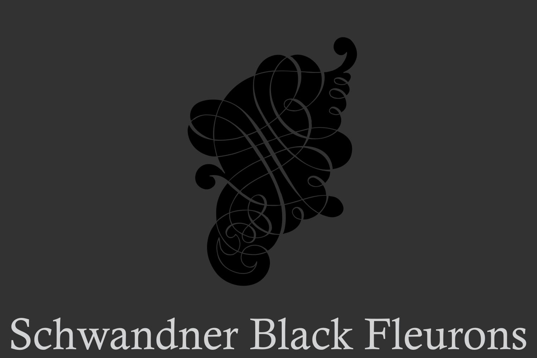 Schwandner Black Fleurons example image 2