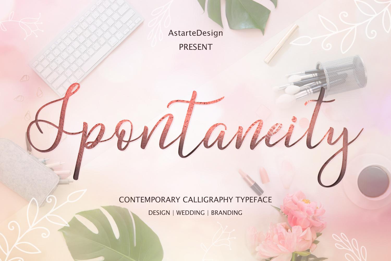 Spontaneity - script font example image 1