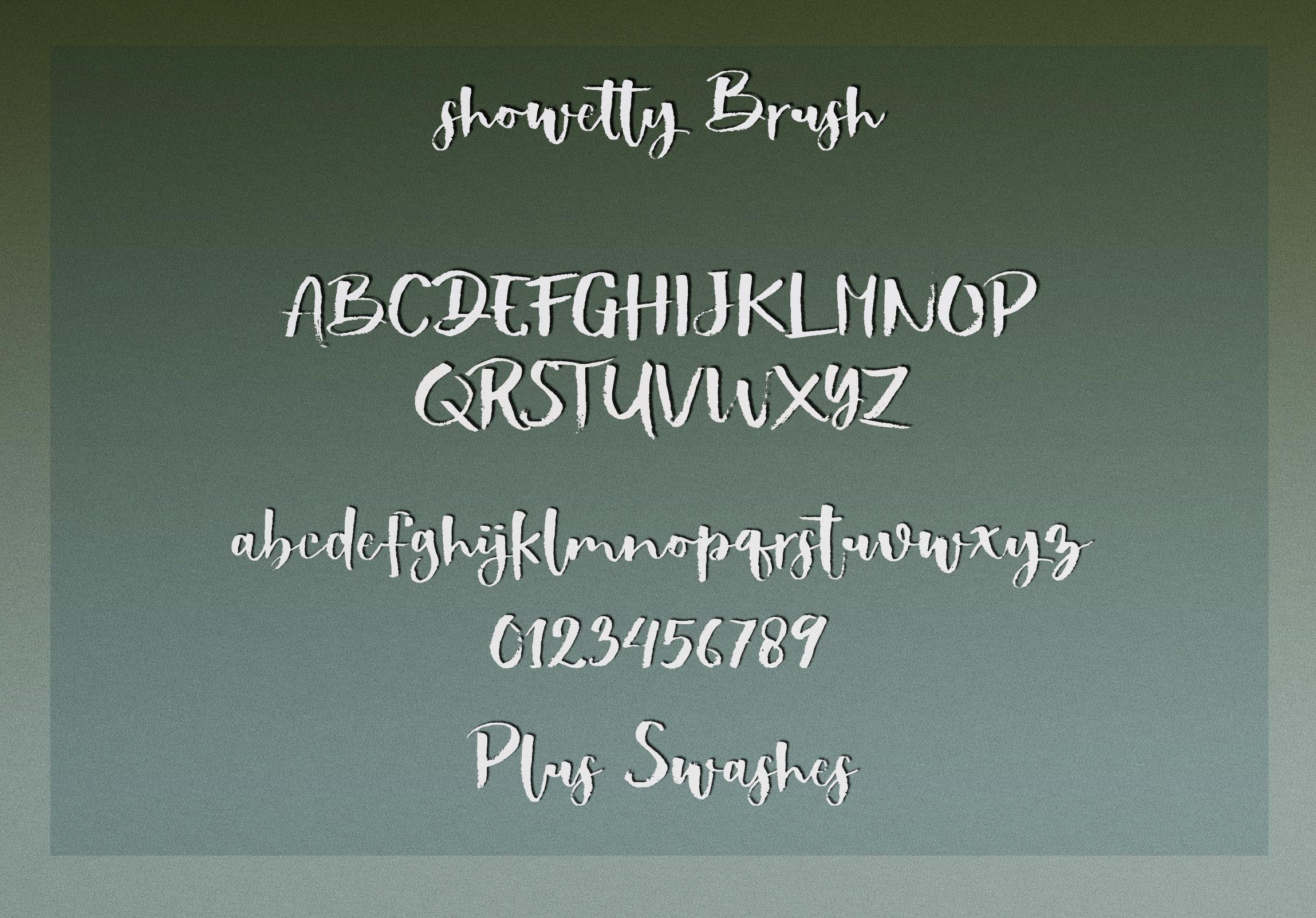Showetty Brush Script  40 Off  example image 10