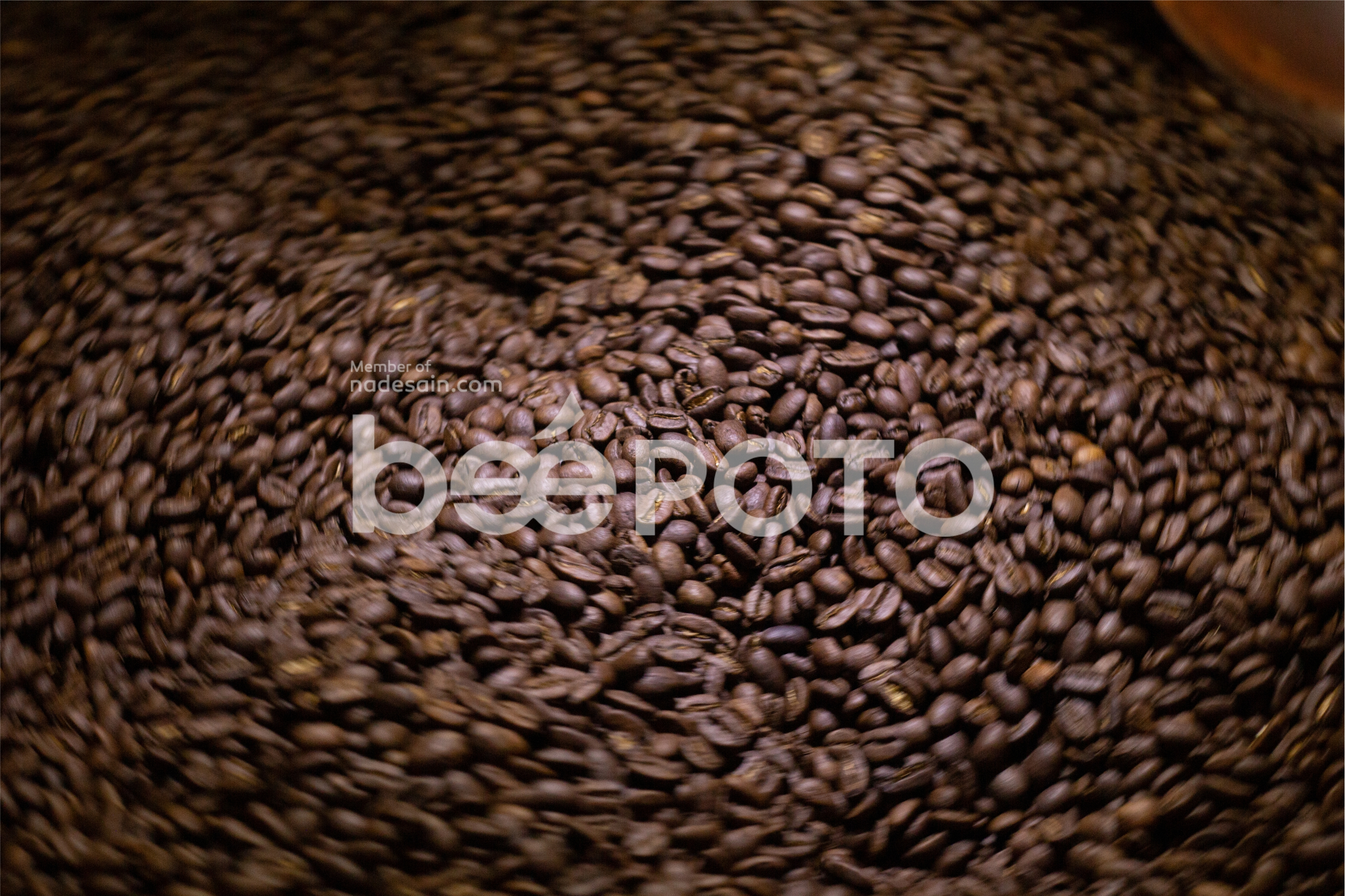 ARABICA COFFEE example image 1