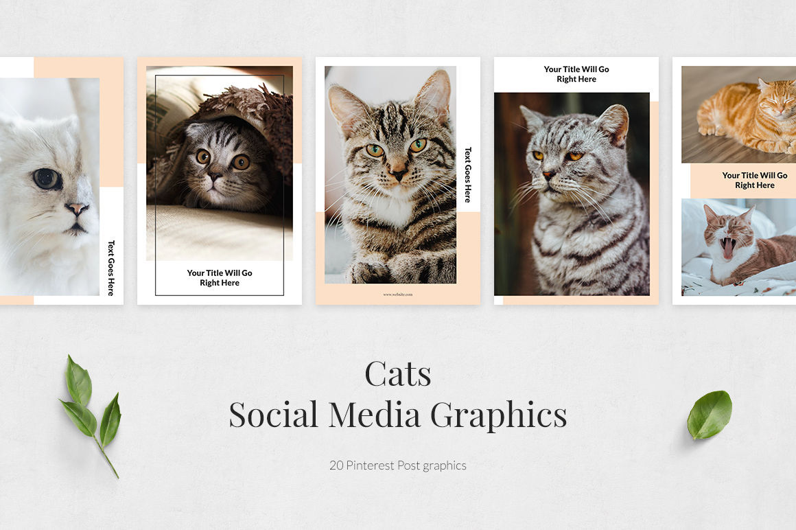 Cats Pinterest Posts example image 2