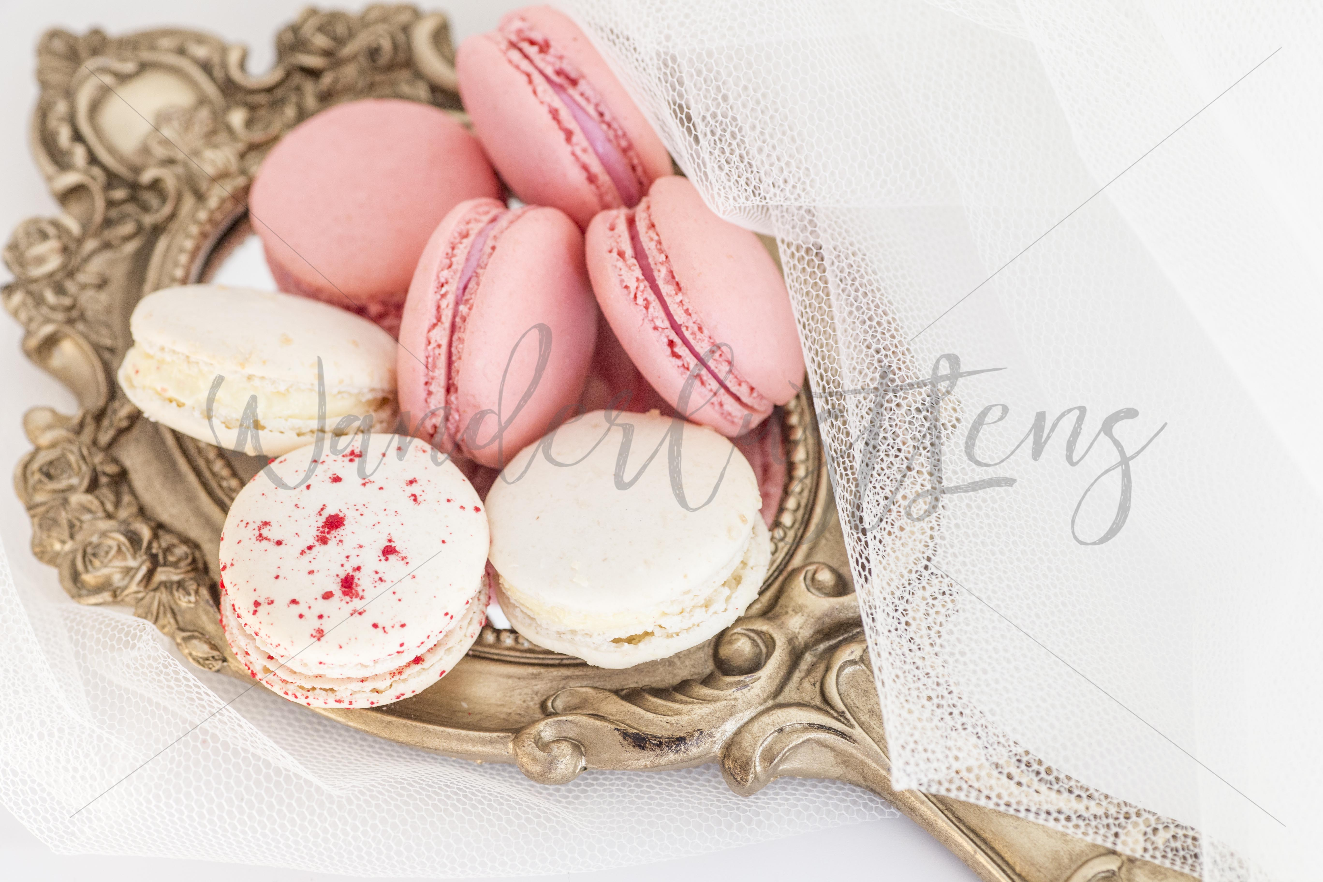 Pink and White Macaroon and Blush Roses Styed Stock bundle example image 2