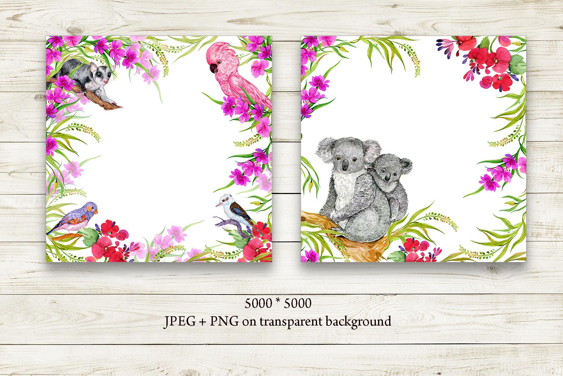 Animals Australia Watercolor example image 9