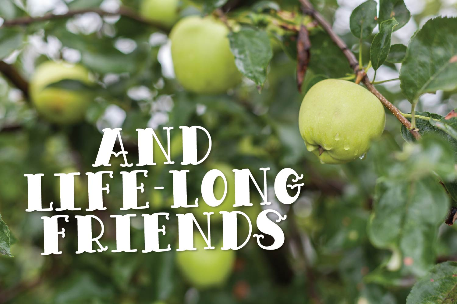 Apple Wine - A Hand Lettered Font Duo With Outline & Filled example image 8
