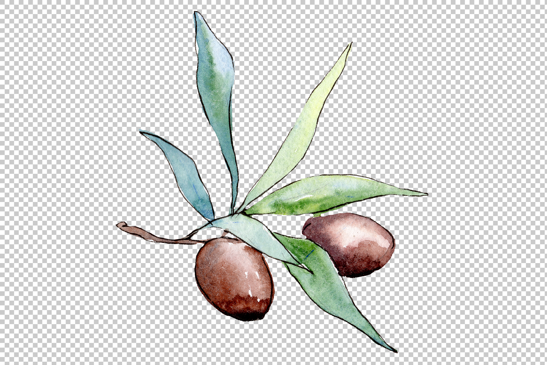 Watercolor olives PNG set example image 2