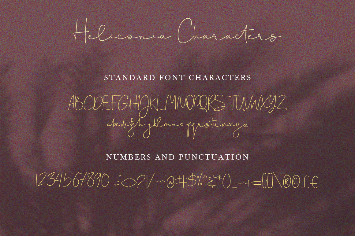 Heliconia Script Font example image 9