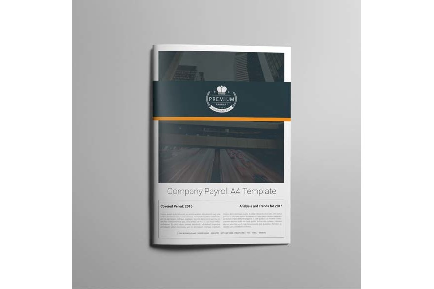 Company Payroll A4 Template example image 5