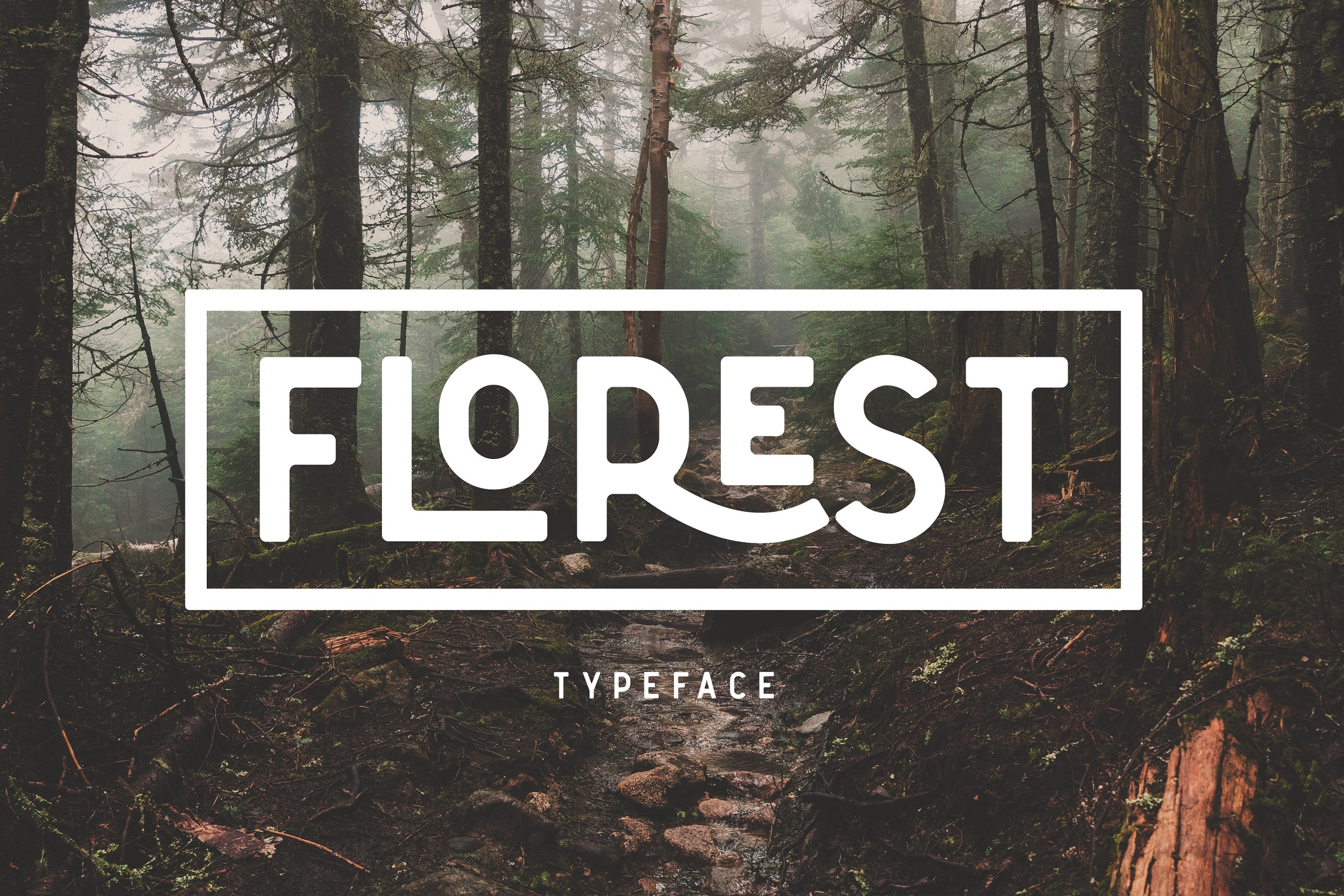 The Florest Typeface example image 3
