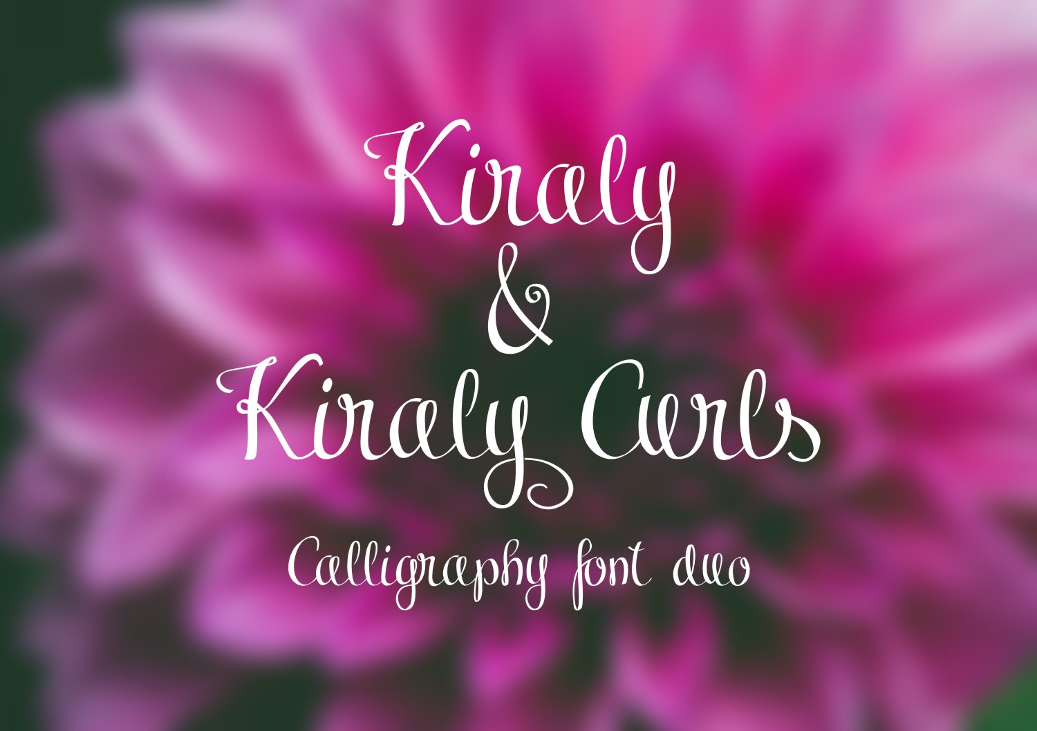 Kiraly Font Duo example image 2