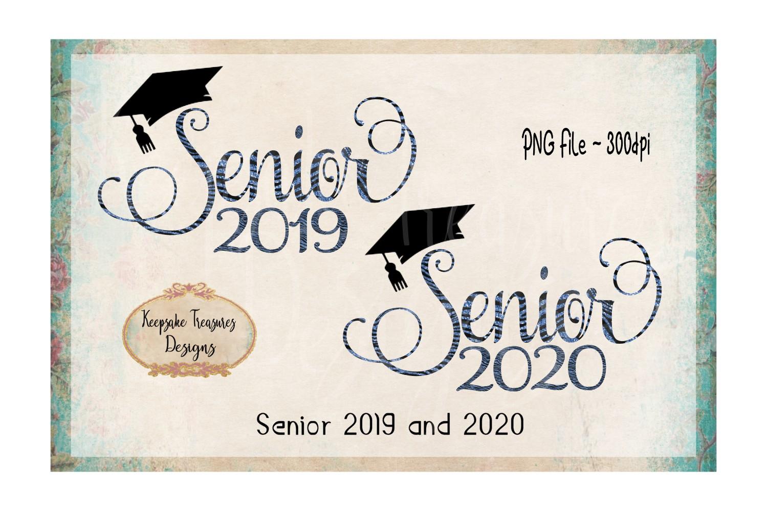 Senior Set 2019 and 2020   Blue Glitter Zebra Print example image 1