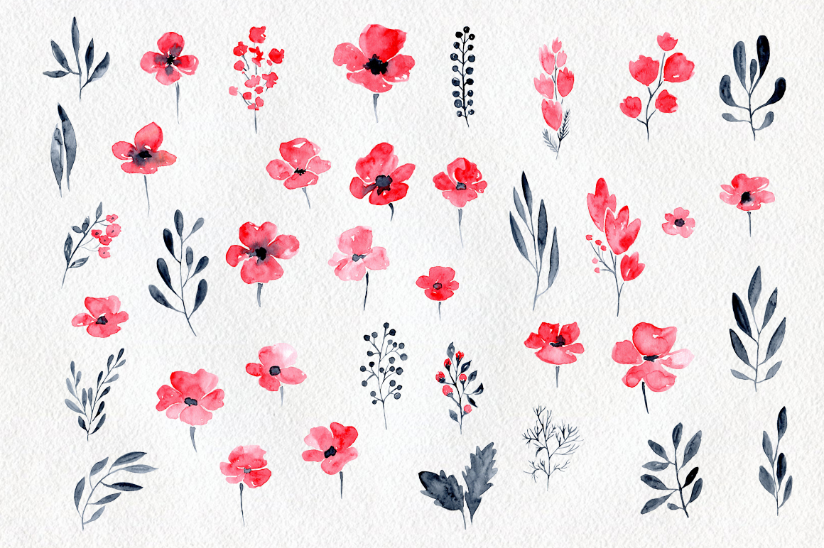 38 Watercolor poppy flowers, leaves example image 2