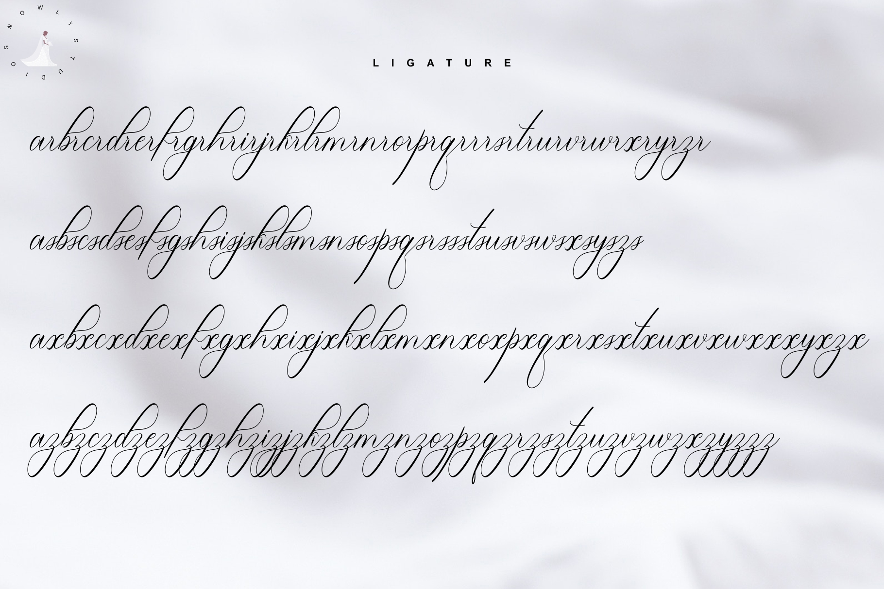 Lucianda Script example image 7