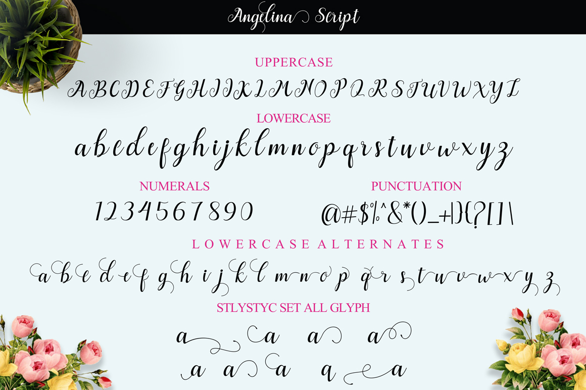 Angelina Script example image 11