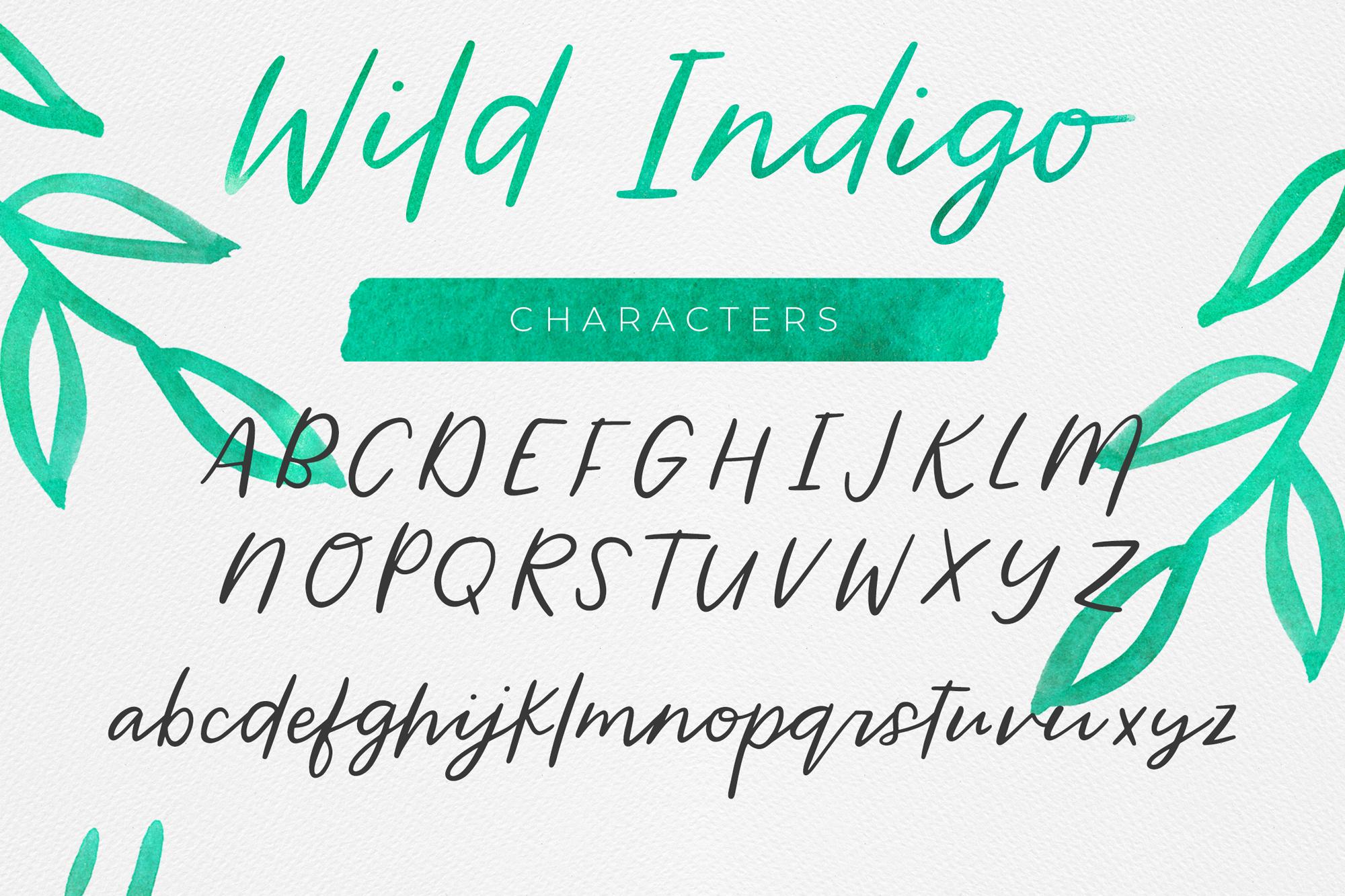 Wild Indigo Script Font example image 2