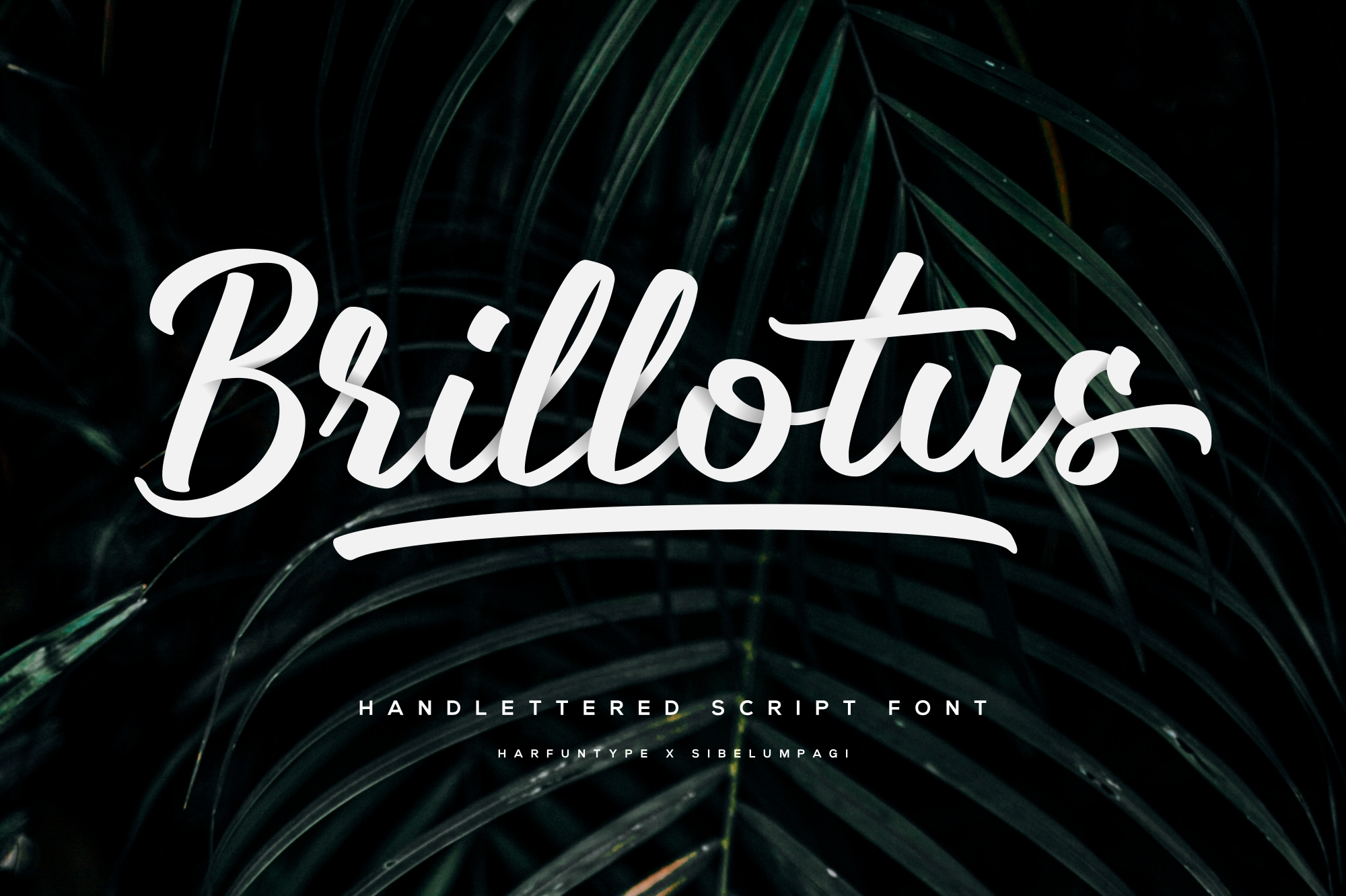 Brillotus - Hand lettered Font example image 1