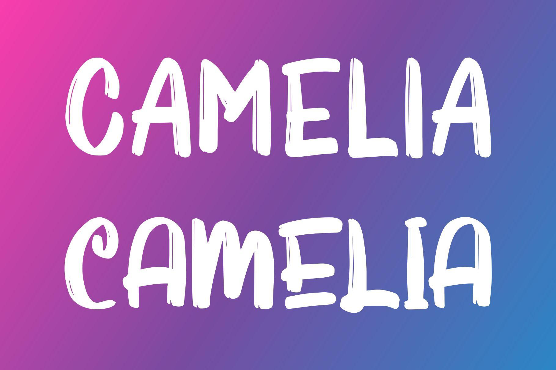 ORNALIA Font Duo example image 3