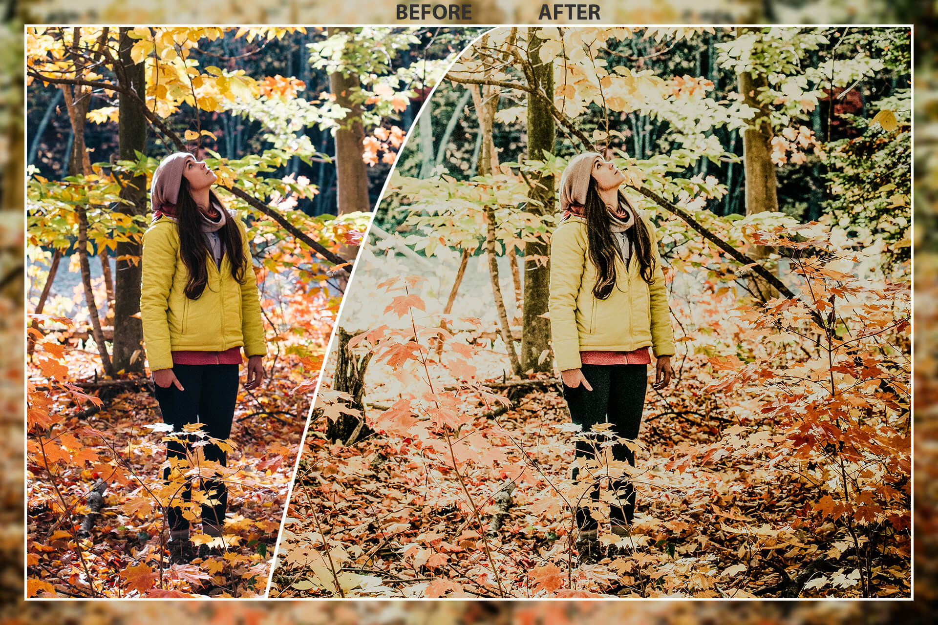 50 Autumn Mobile Lightroom Presets example image 9