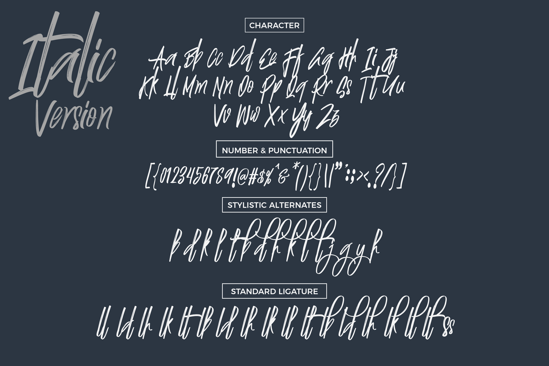 Justin Brush Font example image 7