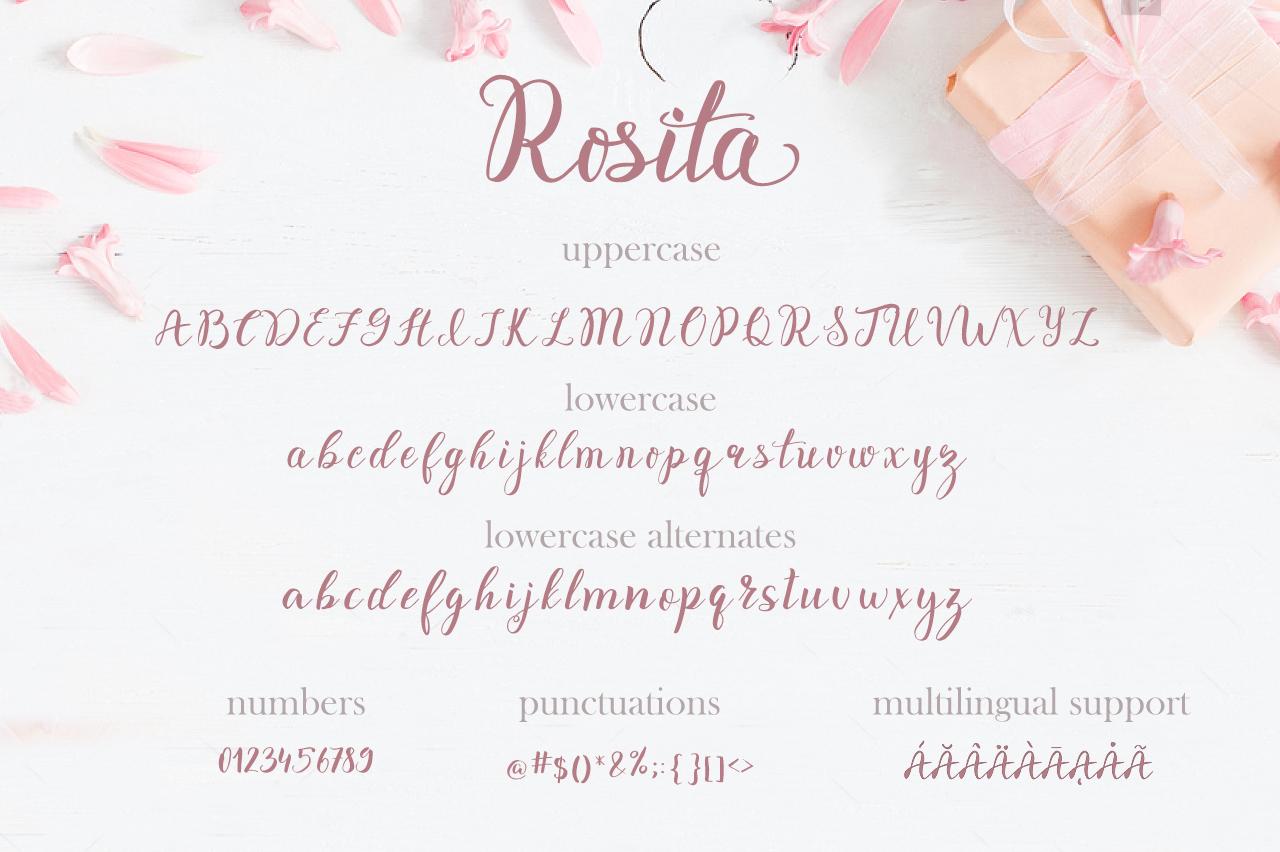 Rosita script - stylish brush font example image 9