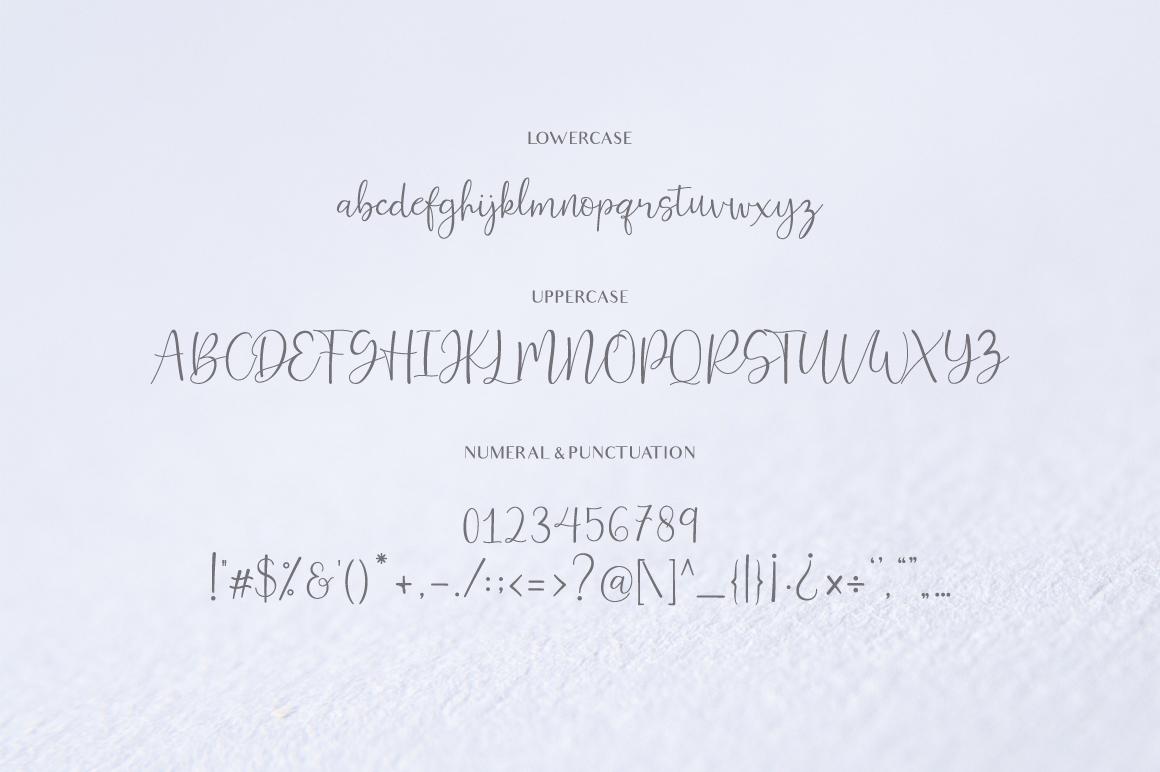Ferinitta - Chic Calligraphy example image 7