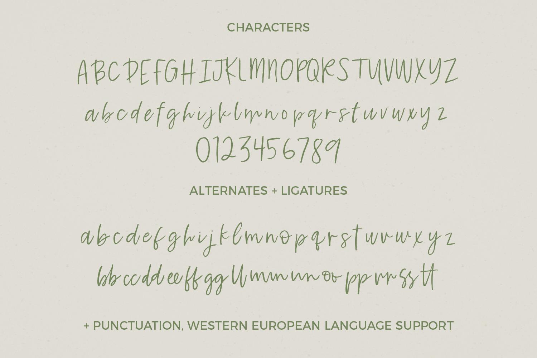Key Largo Brush Script example image 7