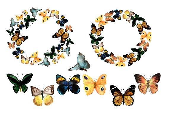 9 Watercolor Butterflies Clip Art example image 2
