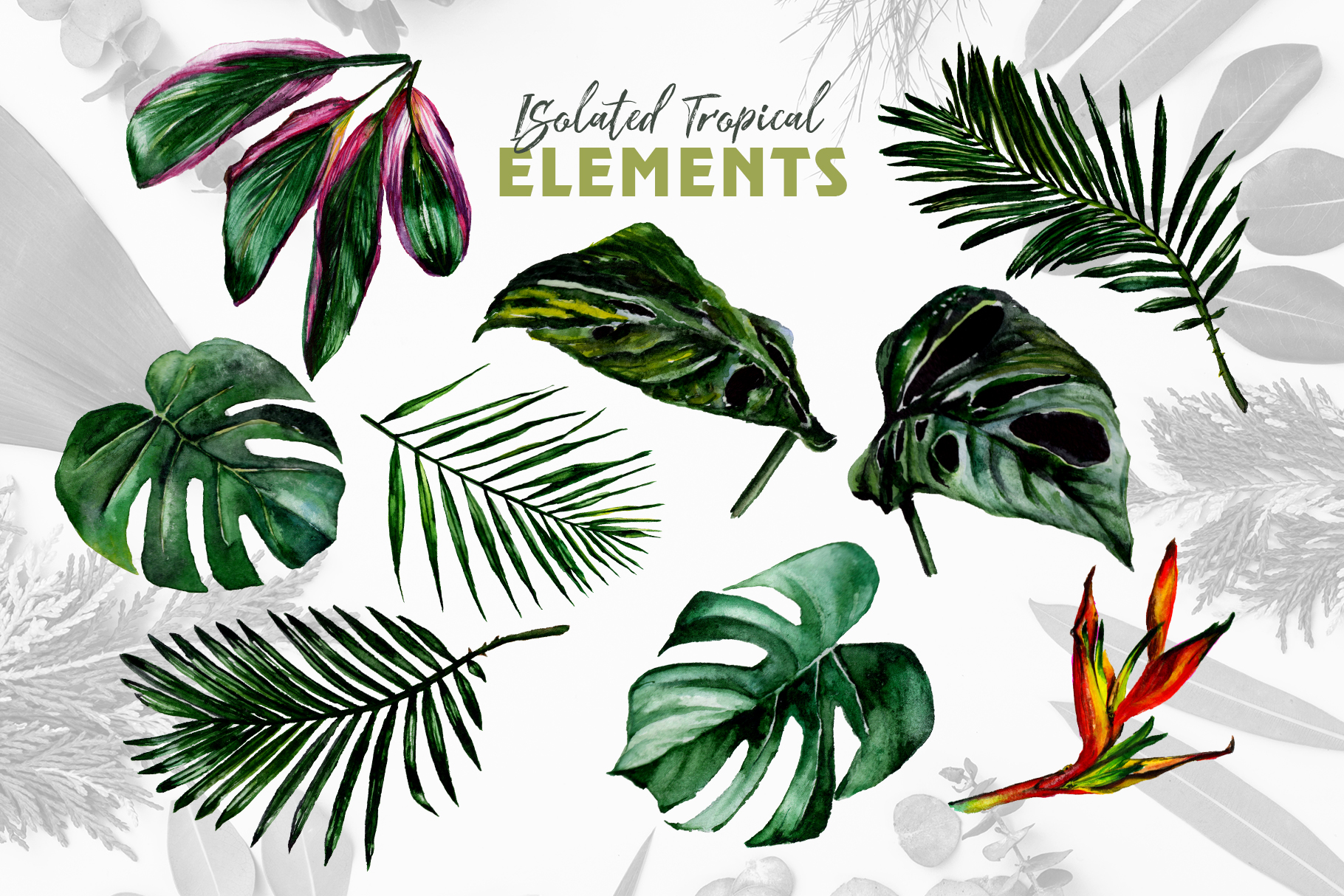 Tropical Jungle Watercolor png example image 9