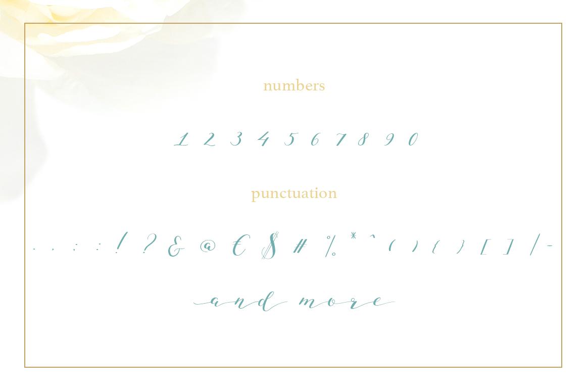 Joleni Font - modern elegant calligraphy example image 3