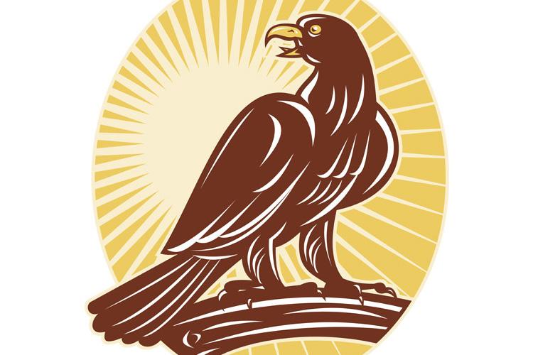 Eagle perching on branch sunburst example image 1