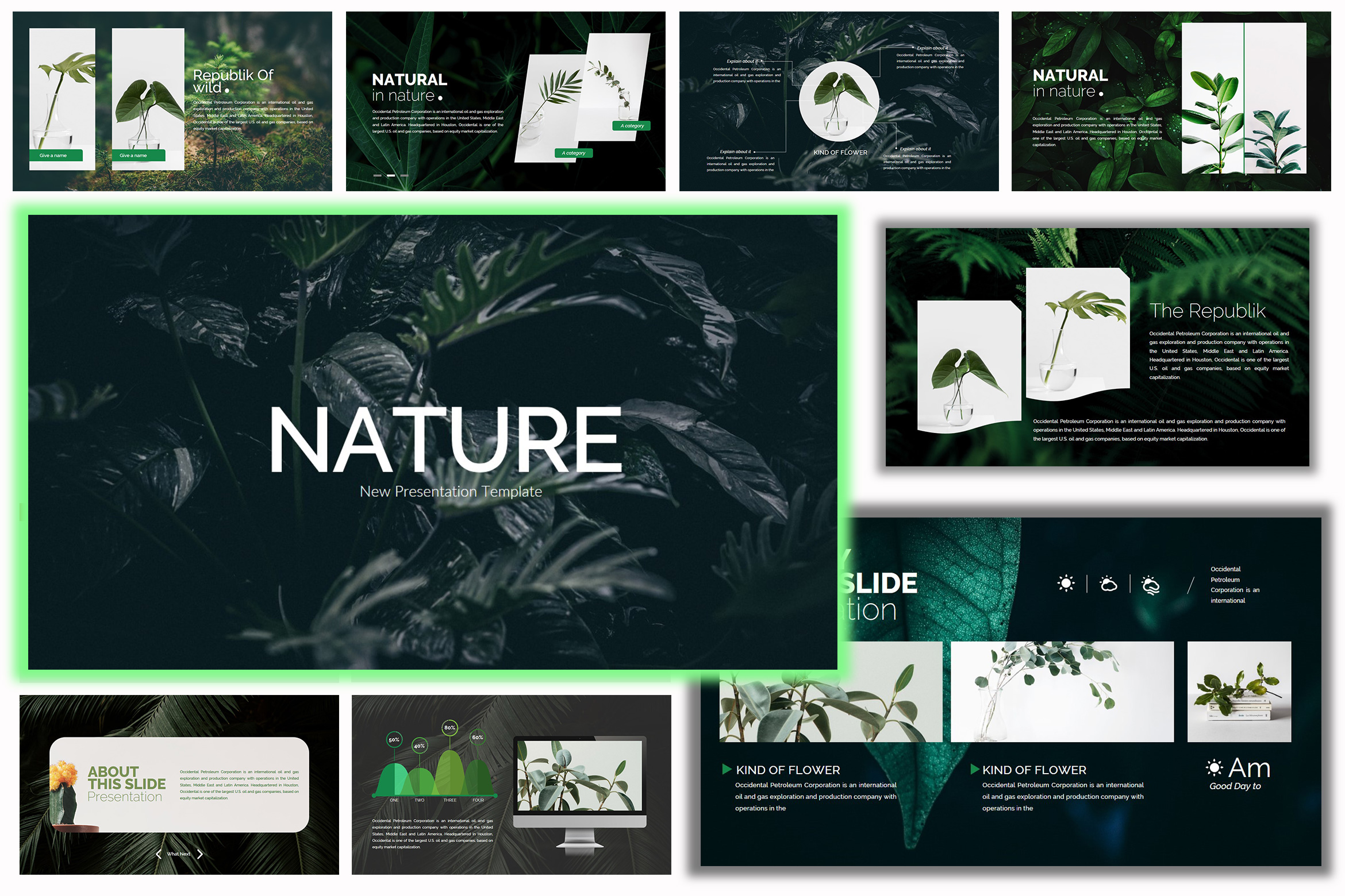 Nature - Google Slides Presentation example image 8
