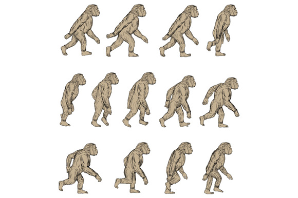 Homo Habilis Walking Cycle Collection Set example image 1