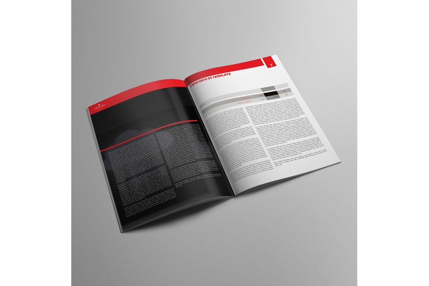 Startup Costs A4 Template example image 2