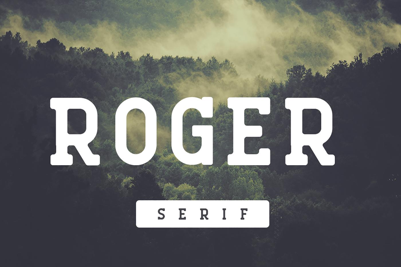 Roger Serif example image 1