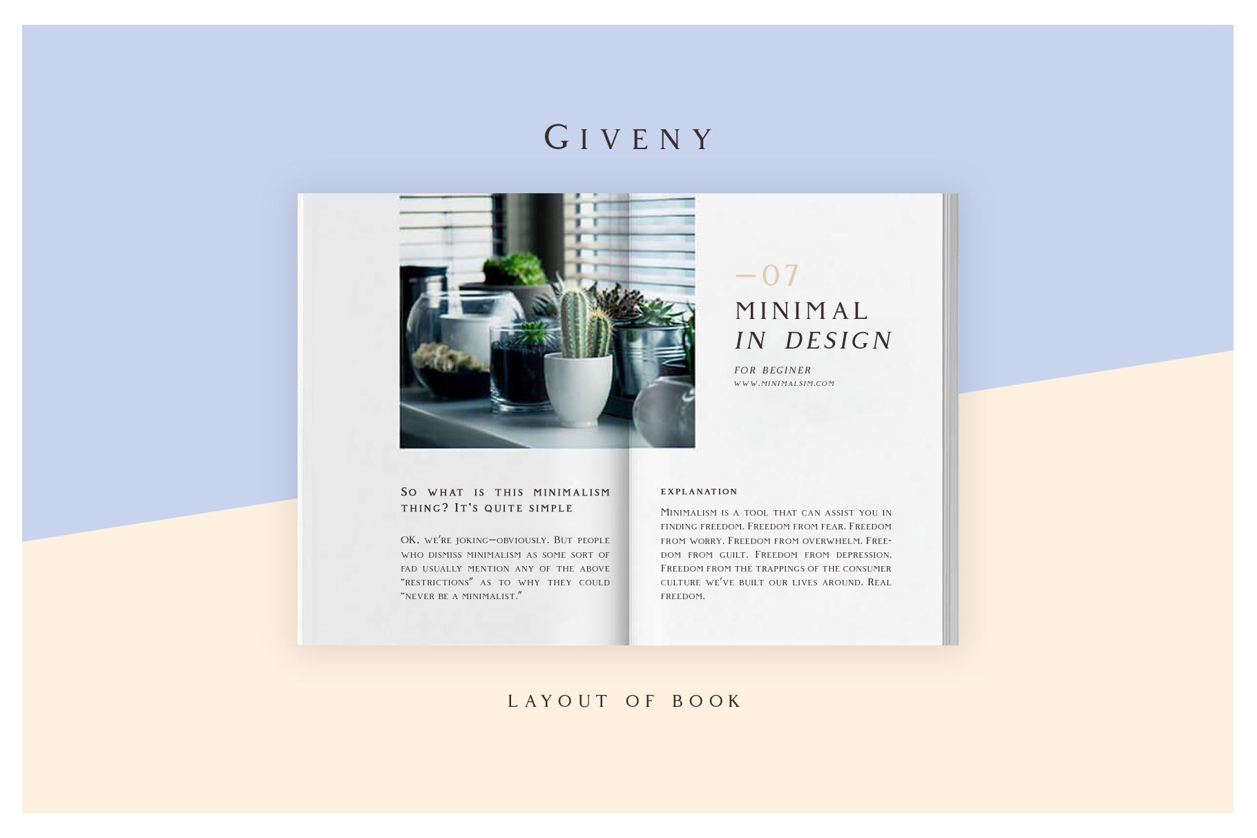 Giveny - Classy Serif Font example image 8