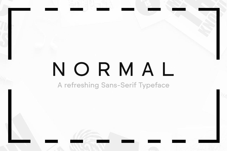 NORMAL - Minimal Typeface & WebFonts example image 7