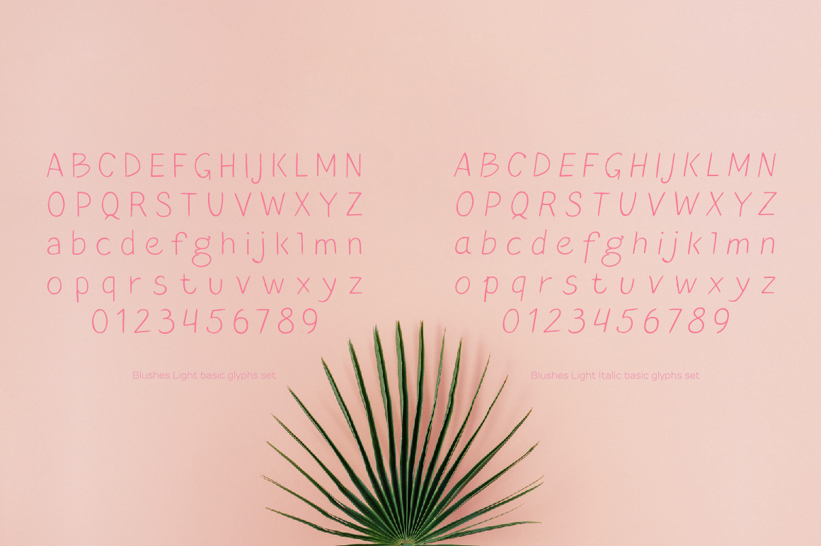 Blushes — Light & Light Italic example image 4