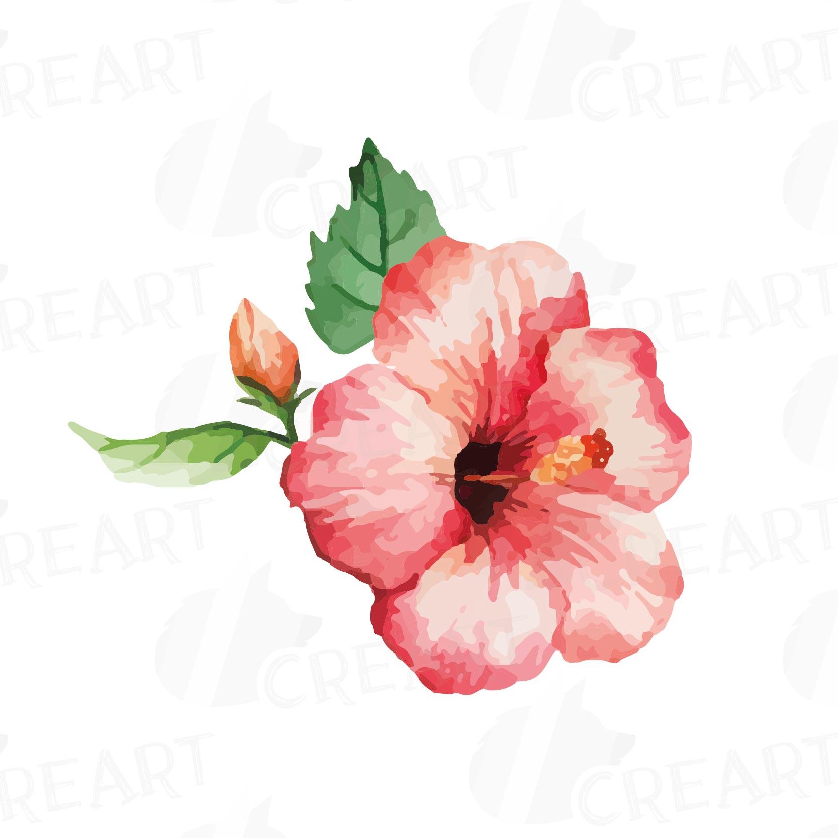 watercolor wild flowers clip art pack design bundles
